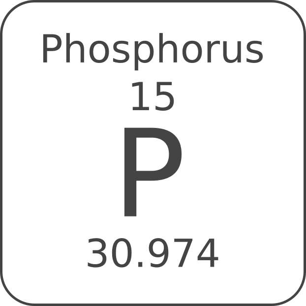 Guide to a Low Phosphorus Diet